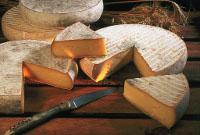 полезность сыра, сыр, изготовление сыра